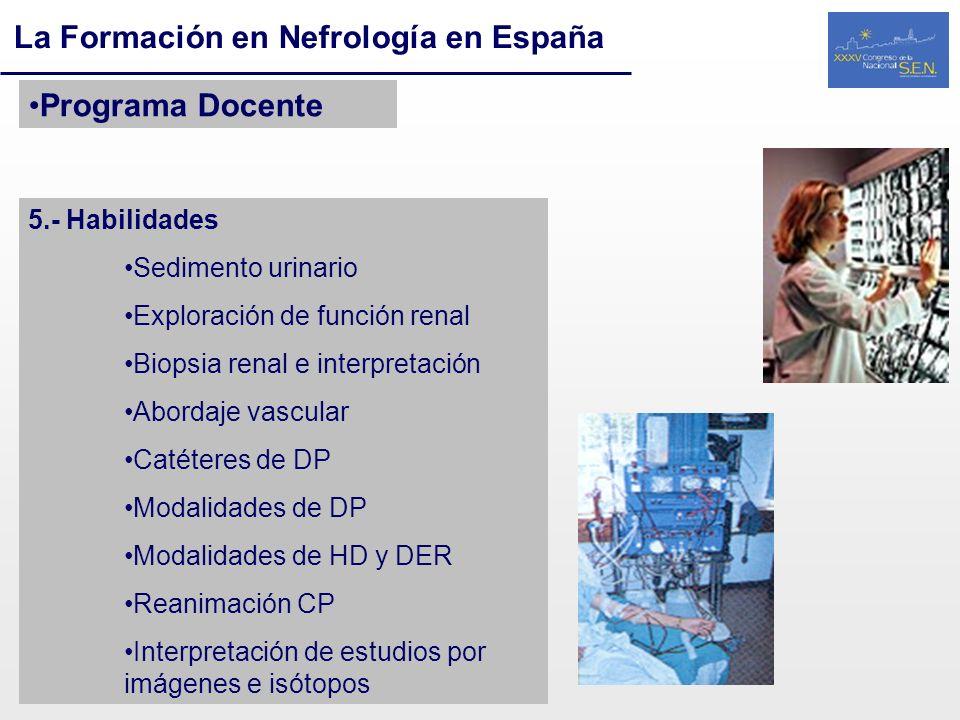 La Formación en Nefrología en España