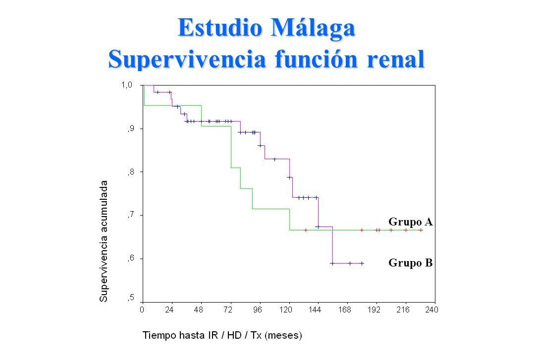 Estudio Málaga Supervivencia función renal