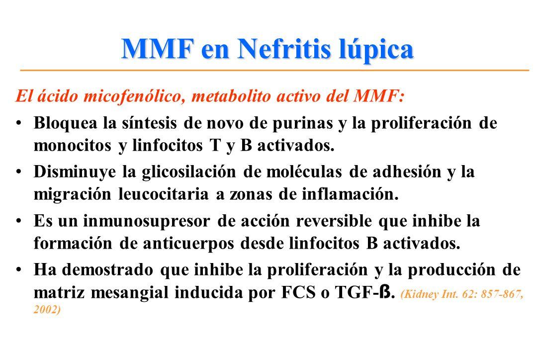 MMF en Nefritis lúpica El ácido micofenólico, metabolito activo del MMF: