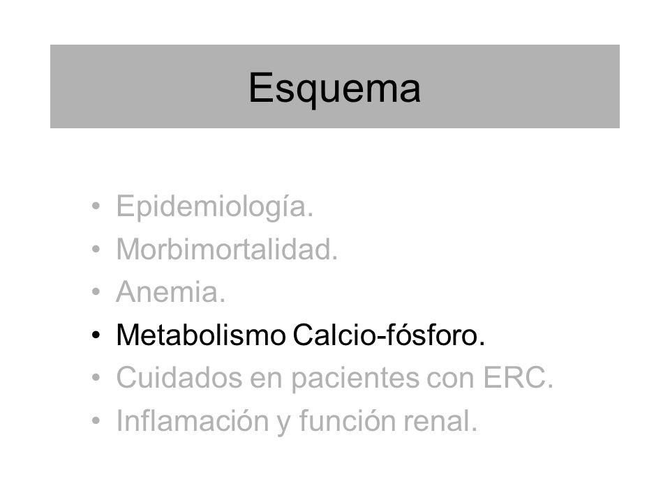 Esquema Epidemiología. Morbimortalidad. Anemia.