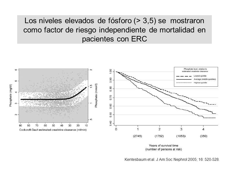 Los niveles elevados de fósforo (> 3,5) se mostraron como factor de riesgo independiente de mortalidad en pacientes con ERC