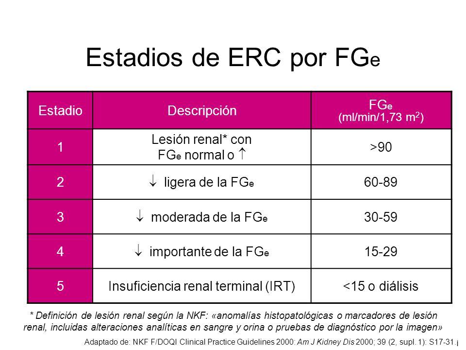 Insuficiencia renal terminal (IRT)