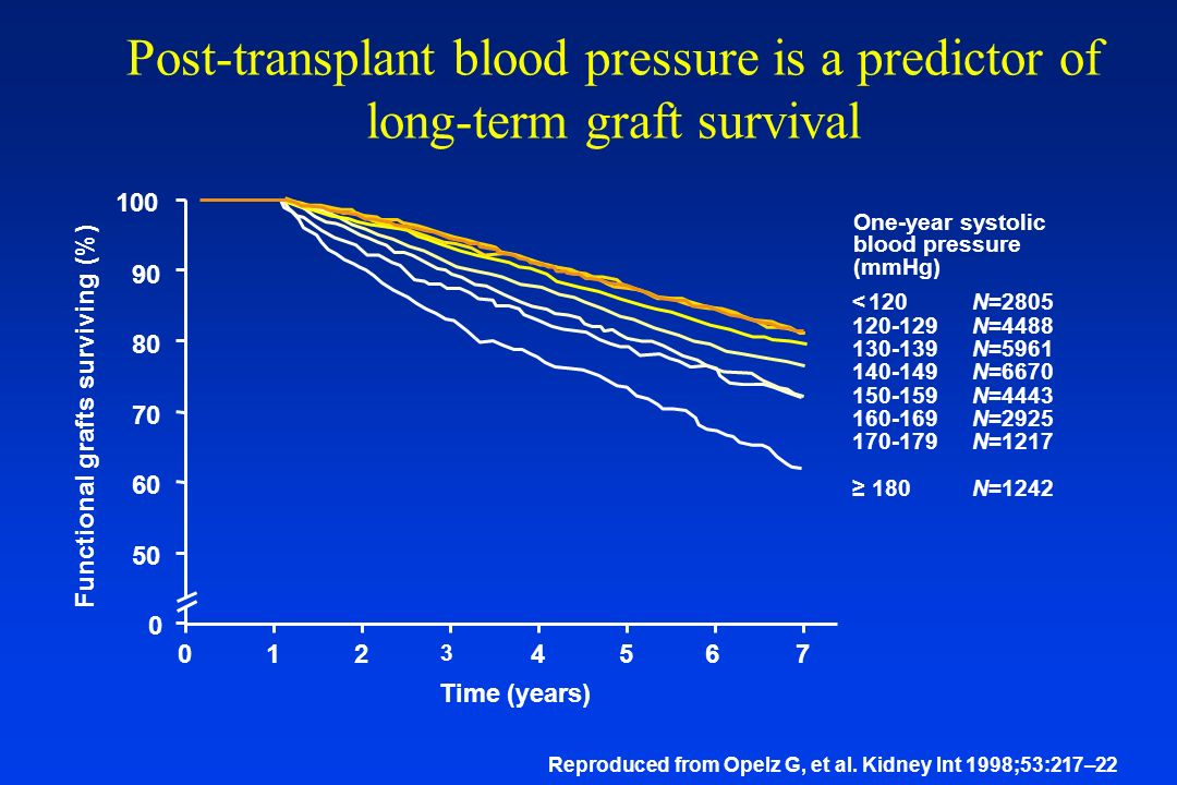 Post-transplant blood pressure is a predictor of long-term graft survival