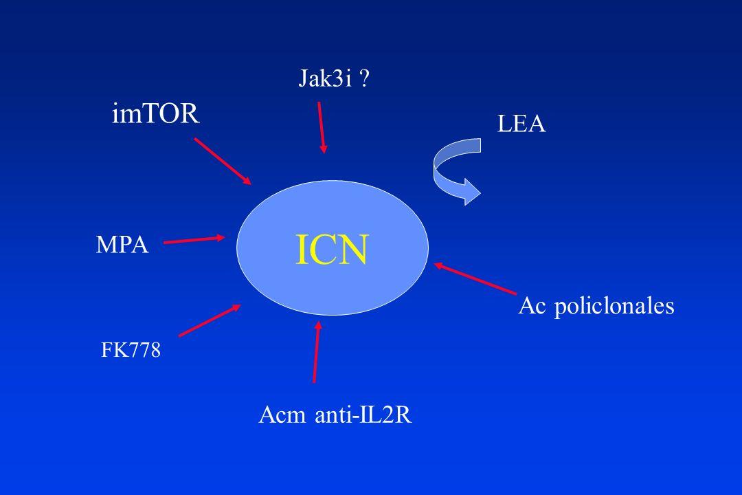 Jak3i imTOR LEA ICN MPA Ac policlonales FK778 Acm anti-IL2R