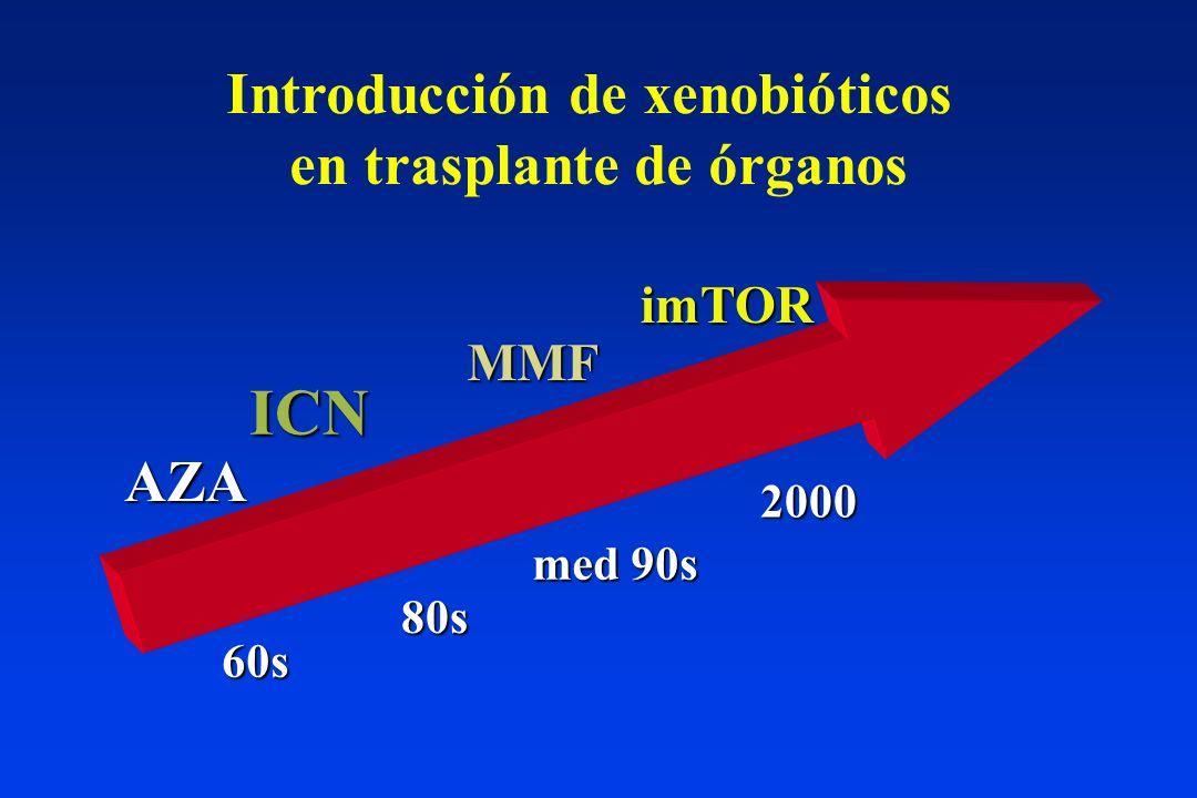 Introducción de xenobióticos en trasplante de órganos