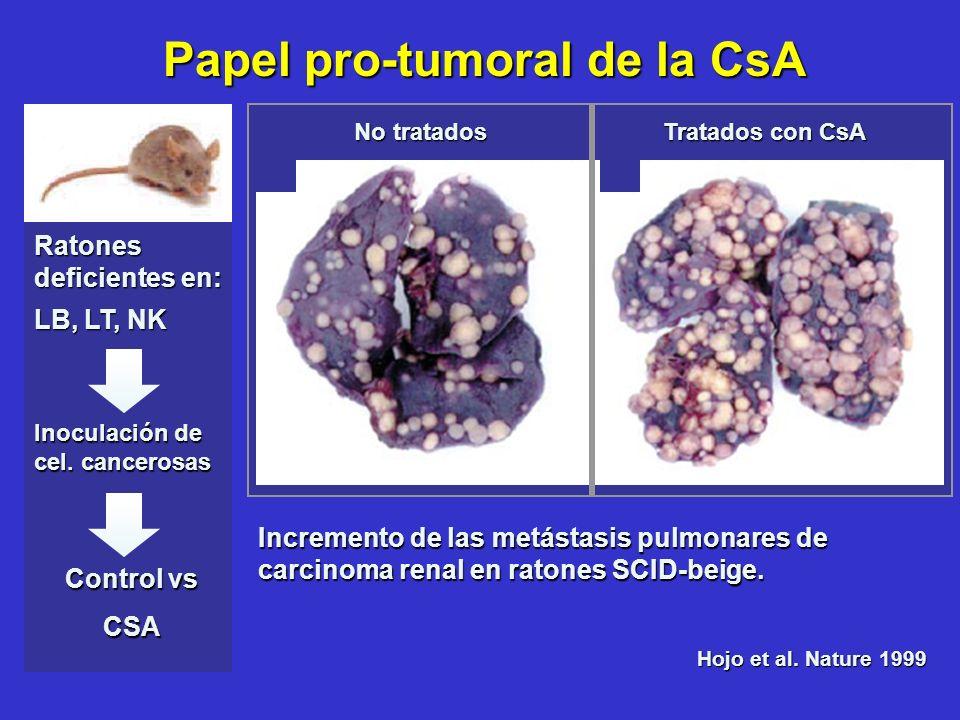 Papel pro-tumoral de la CsA