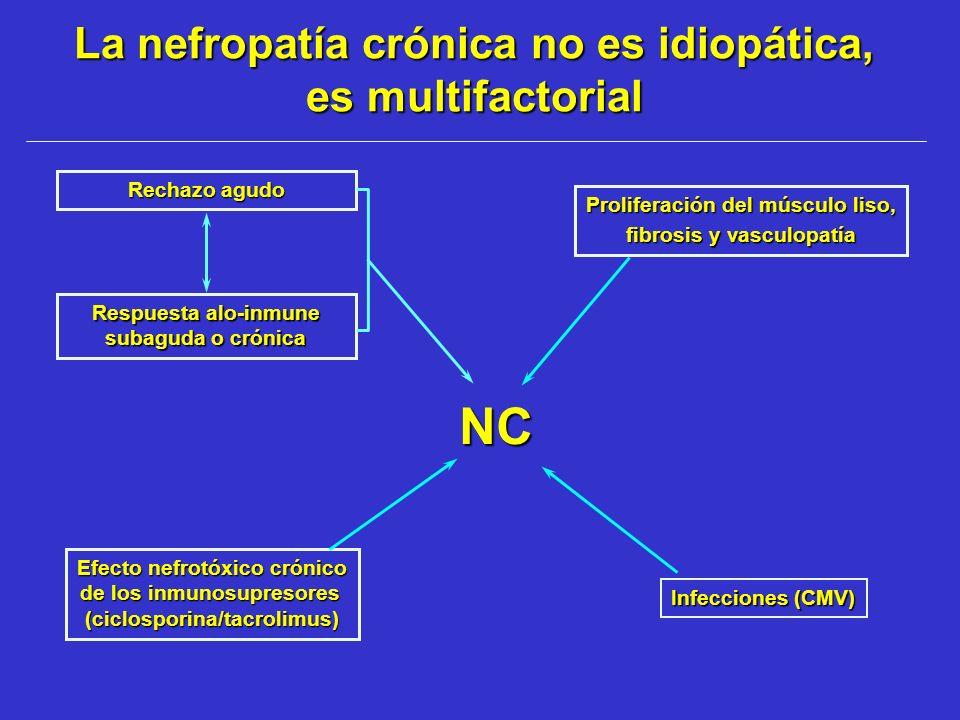 La nefropatía crónica no es idiopática, es multifactorial
