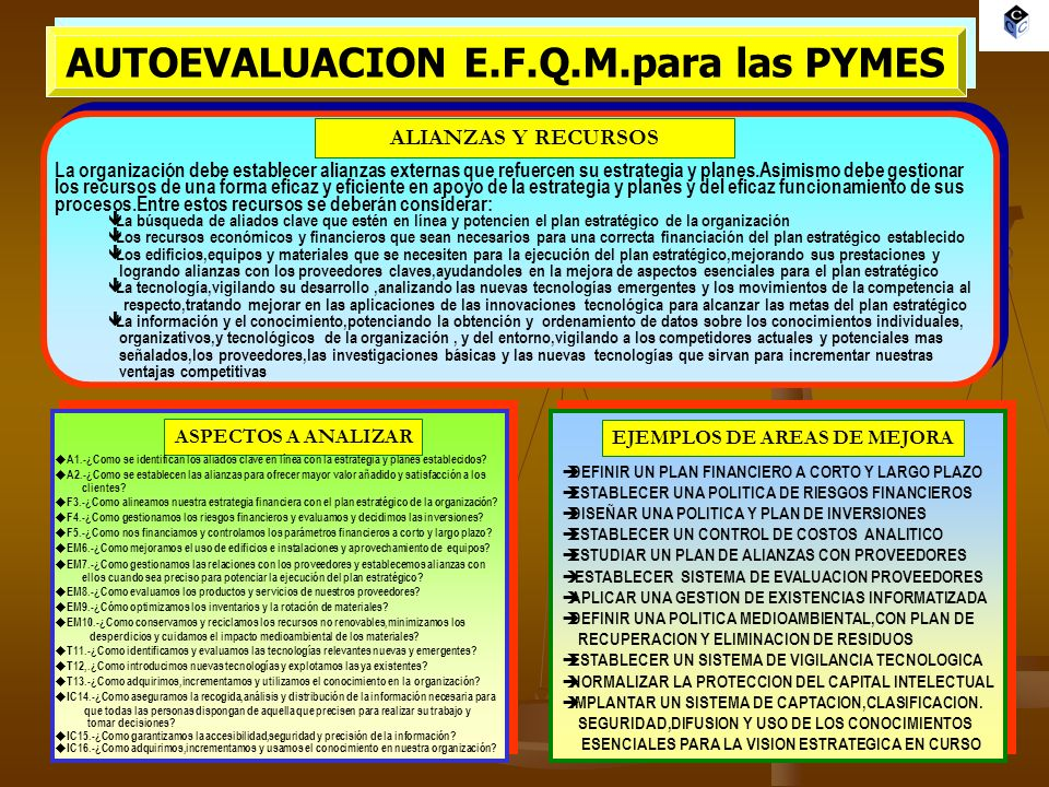 AUTOEVALUACION E.F.Q.M.para las PYMES EJEMPLOS DE AREAS DE MEJORA