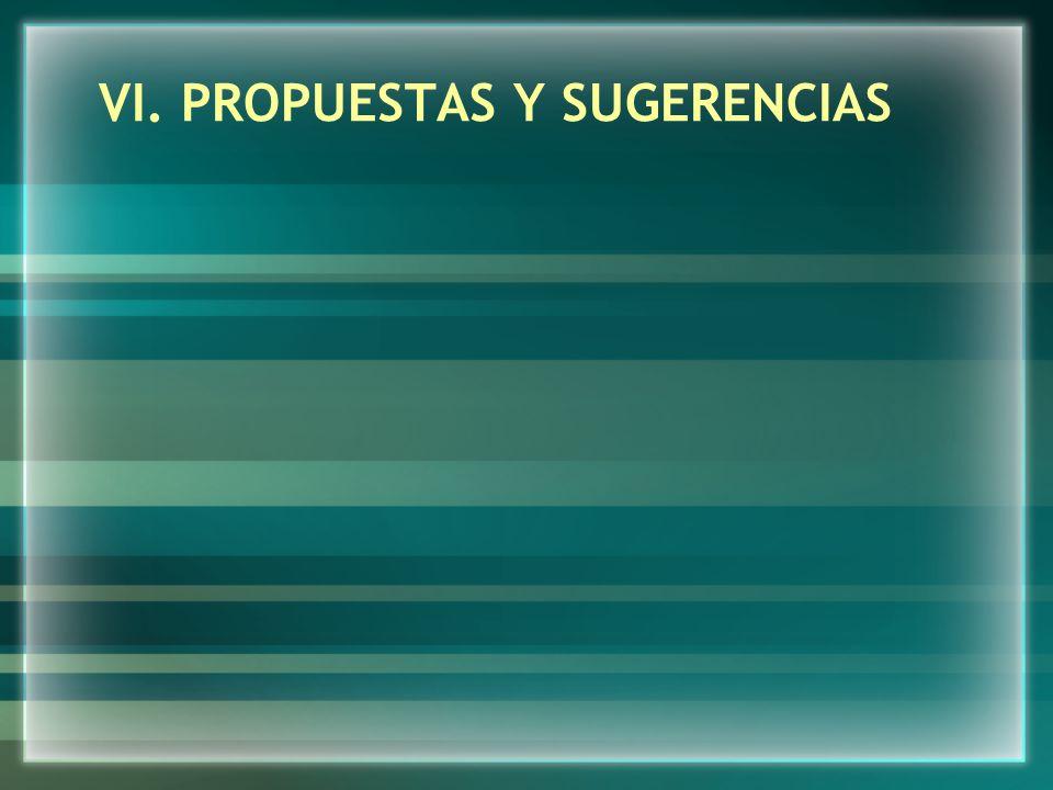 VI. PROPUESTAS Y SUGERENCIAS