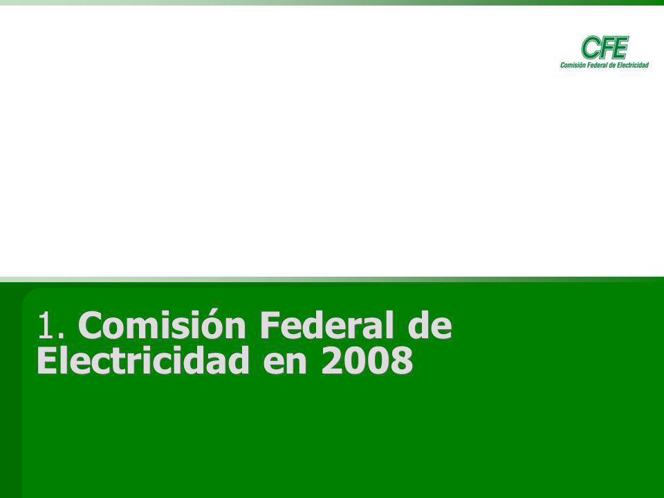 1. Comisión Federal de Electricidad en 2008