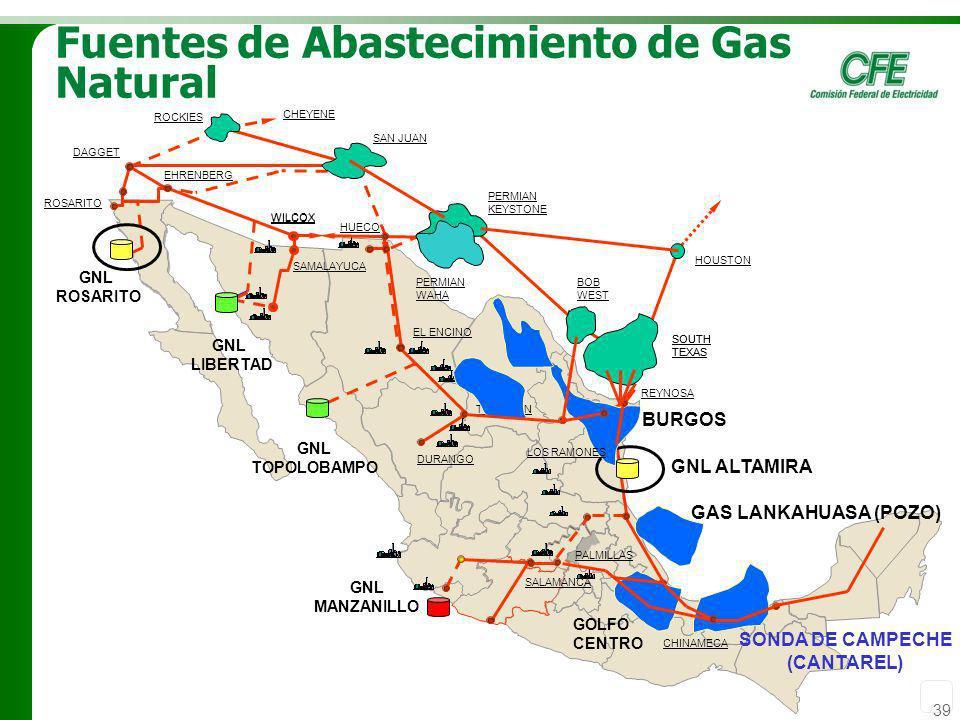 Fuentes de Abastecimiento de Gas Natural