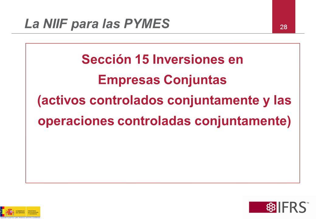 Sección 15 Inversiones en Empresas Conjuntas