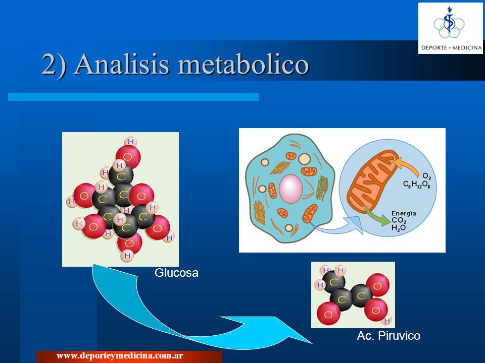 2) Analisis metabolico Glucosa Ac. Piruvico