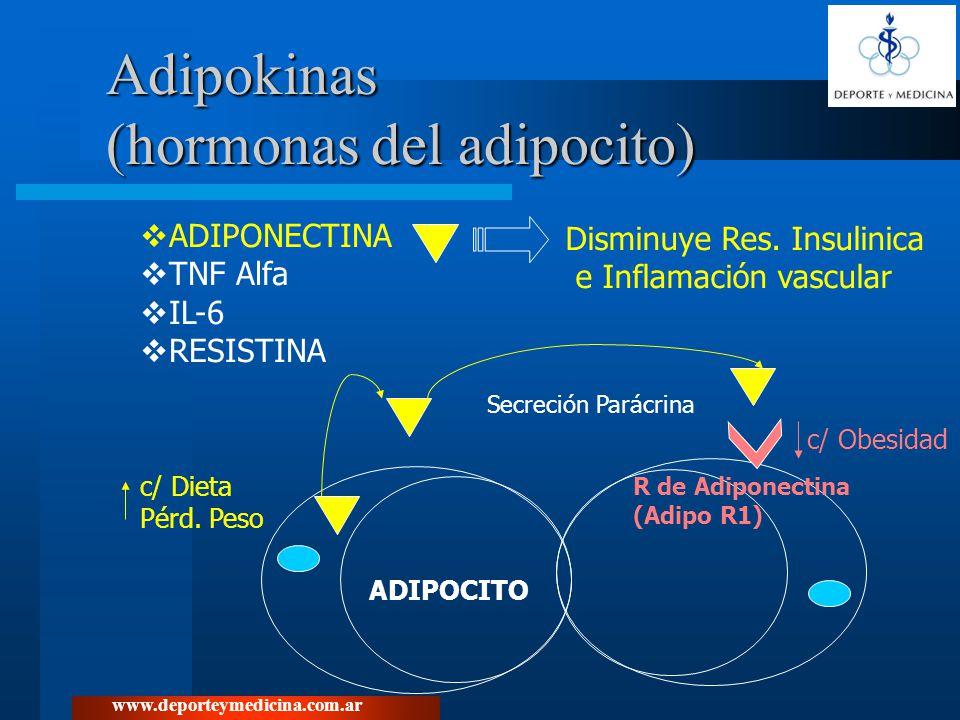 Adipokinas (hormonas del adipocito)