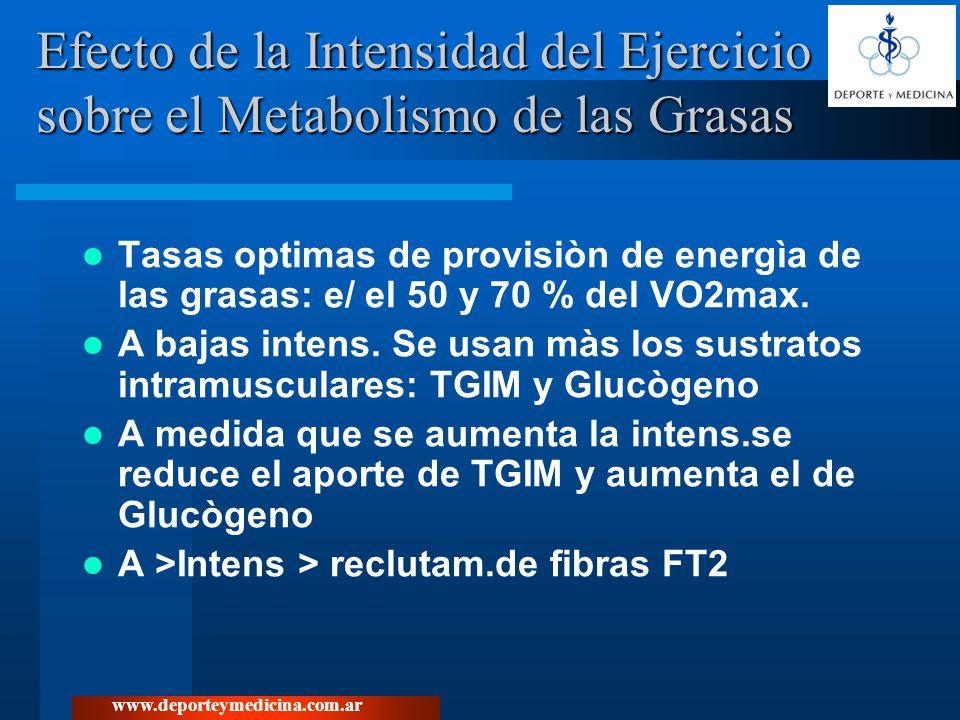Efecto de la Intensidad del Ejercicio sobre el Metabolismo de las Grasas