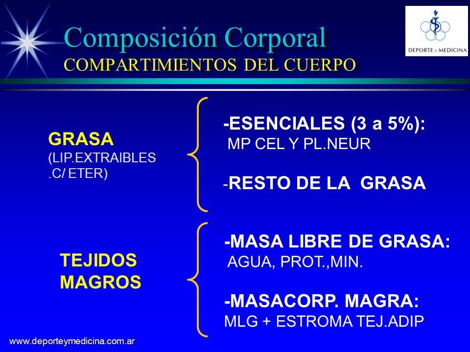 Composición Corporal COMPARTIMIENTOS DEL CUERPO