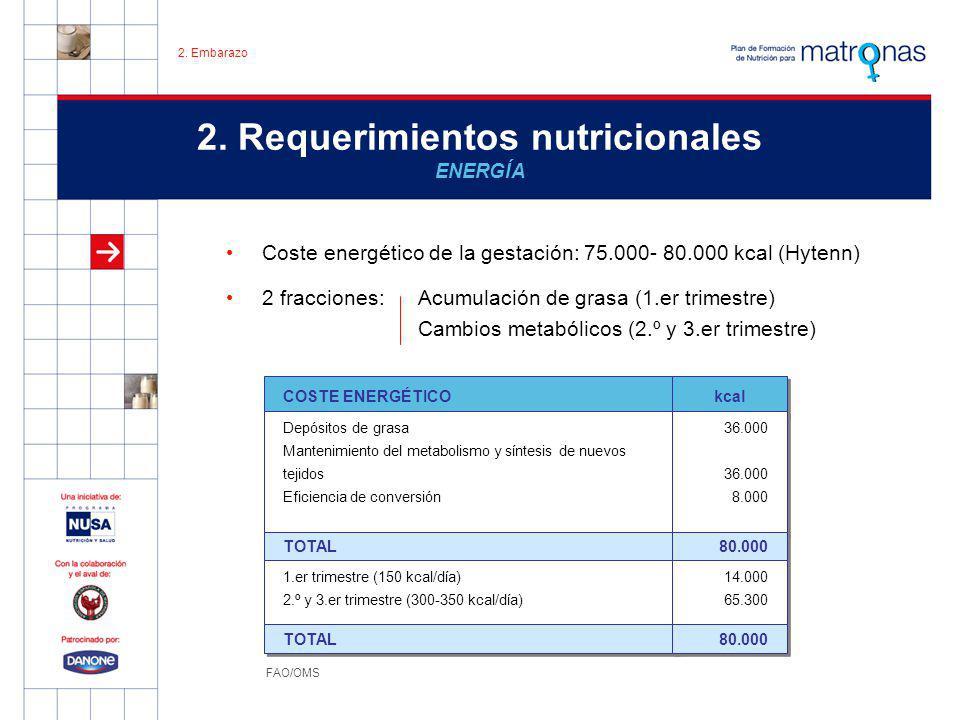 2. Requerimientos nutricionales ENERGÍA