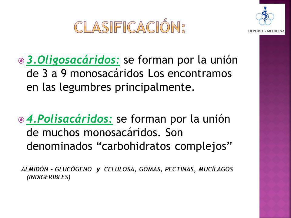 CLASIFICACIÓN: 3.Oligosacáridos: se forman por la unión de 3 a 9 monosacáridos Los encontramos en las legumbres principalmente.