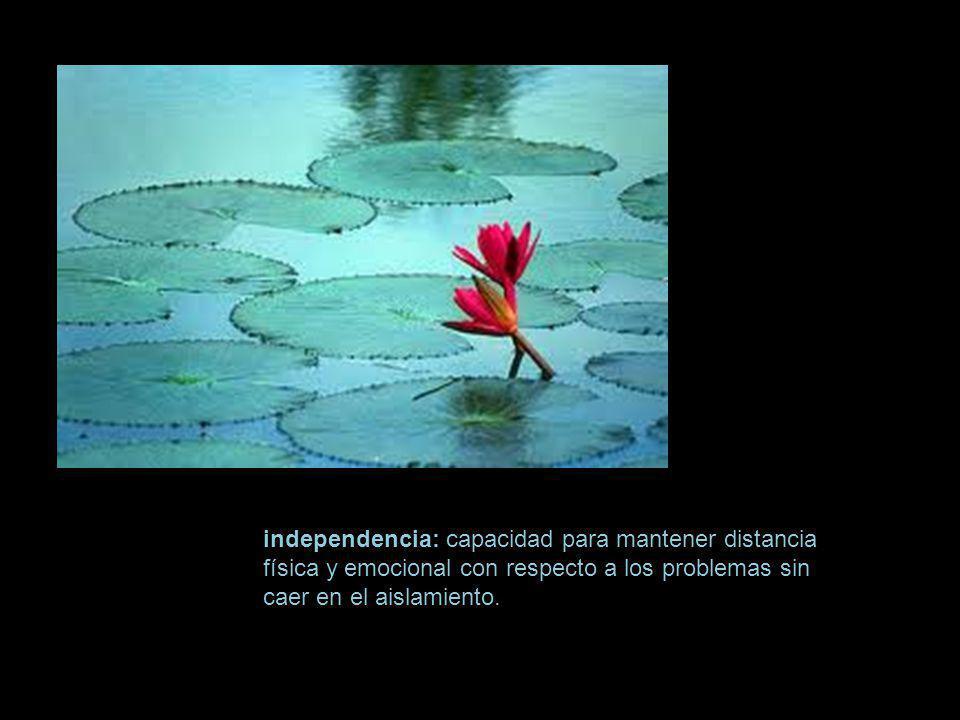independencia: capacidad para mantener distancia física y emocional con respecto a los problemas sin caer en el aislamiento.