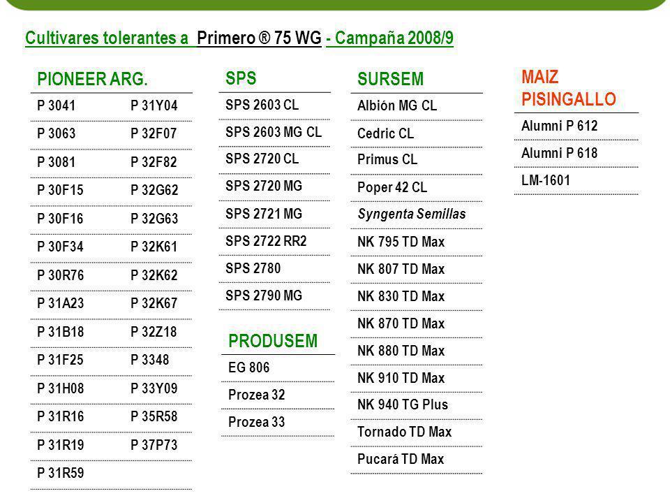 Cultivares tolerantes a Primero ® 75 WG - Campaña 2008/9 PIONEER ARG.