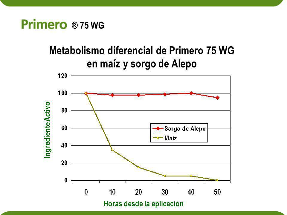 Metabolismo diferencial de Primero 75 WG