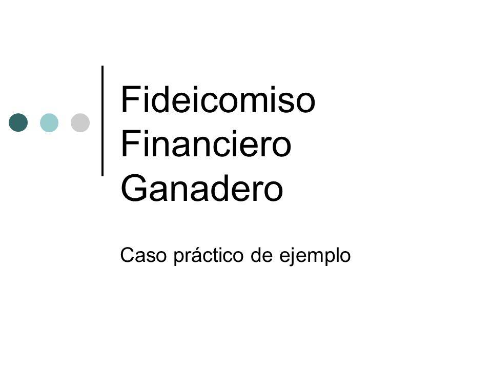 Fideicomiso Financiero Ganadero