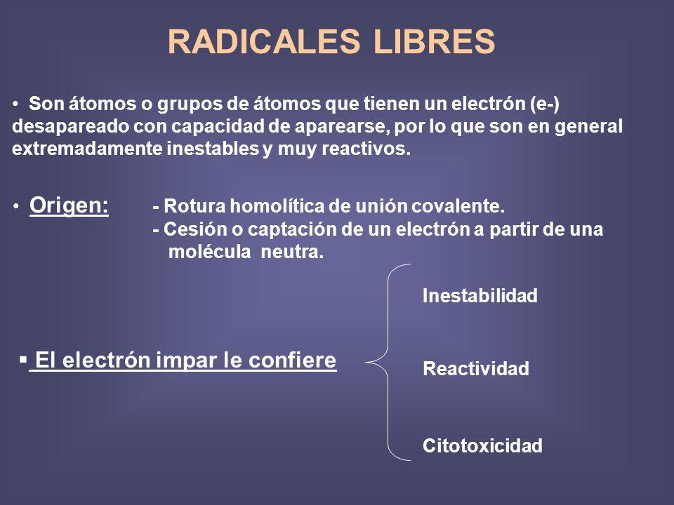 RADICALES LIBRES El electrón impar le confiere