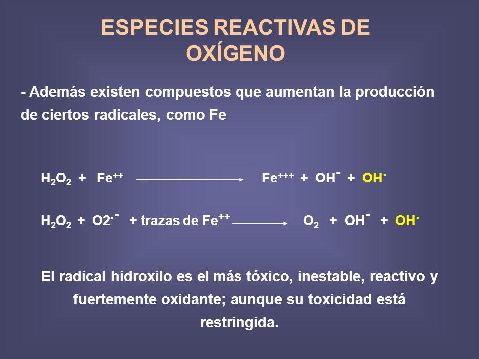 ESPECIES REACTIVAS DE OXÍGENO