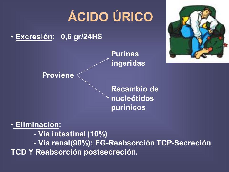 ÁCIDO ÚRICO Excresión: 0,6 gr/24HS Purinas ingeridas Proviene