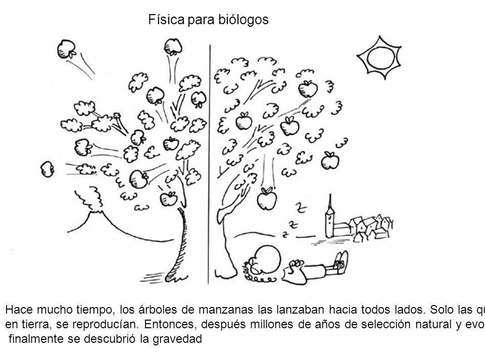 Física para biólogos Hace mucho tiempo, los árboles de manzanas las lanzaban hacia todos lados. Solo las que caían.