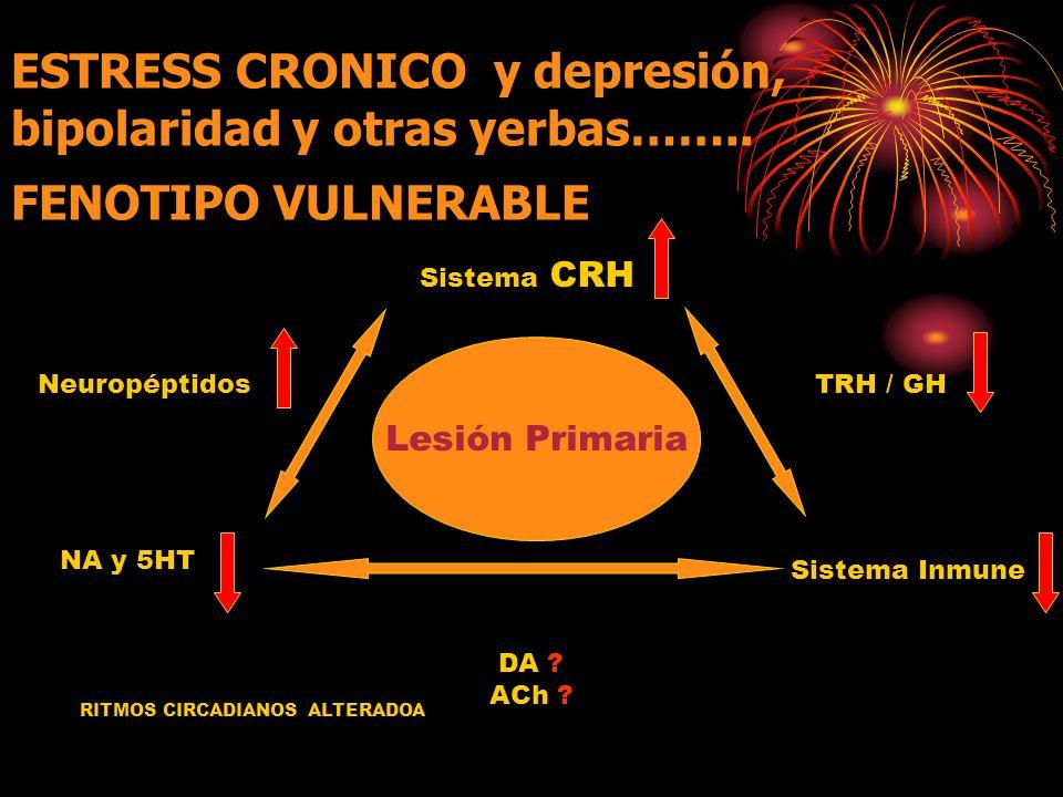 ESTRESS CRONICO y depresión, bipolaridad y otras yerbas……