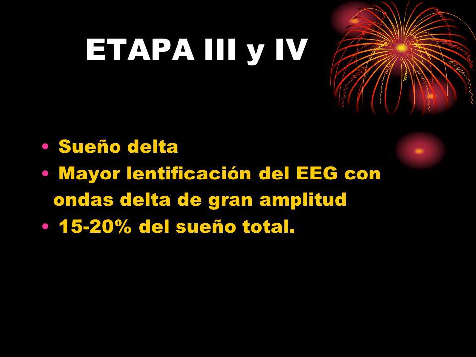 ETAPA III y IV Sueño delta Mayor lentificación del EEG con