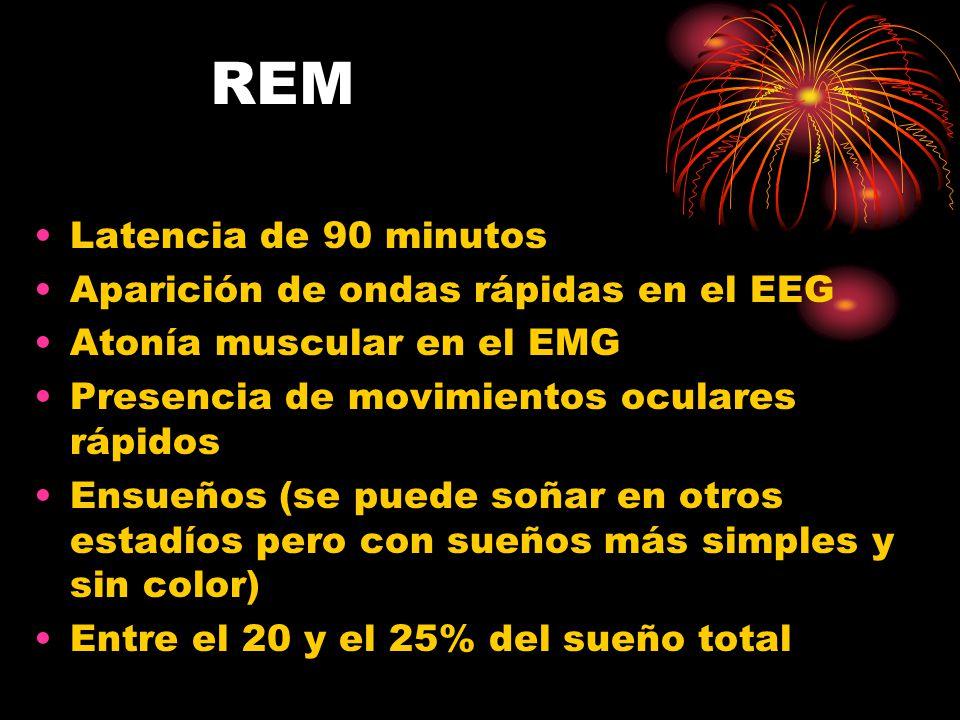 REM Latencia de 90 minutos Aparición de ondas rápidas en el EEG