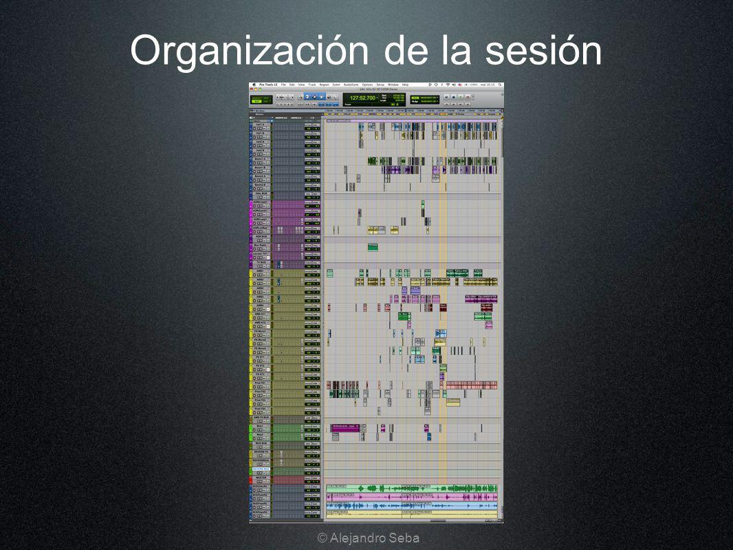 Organización de la sesión