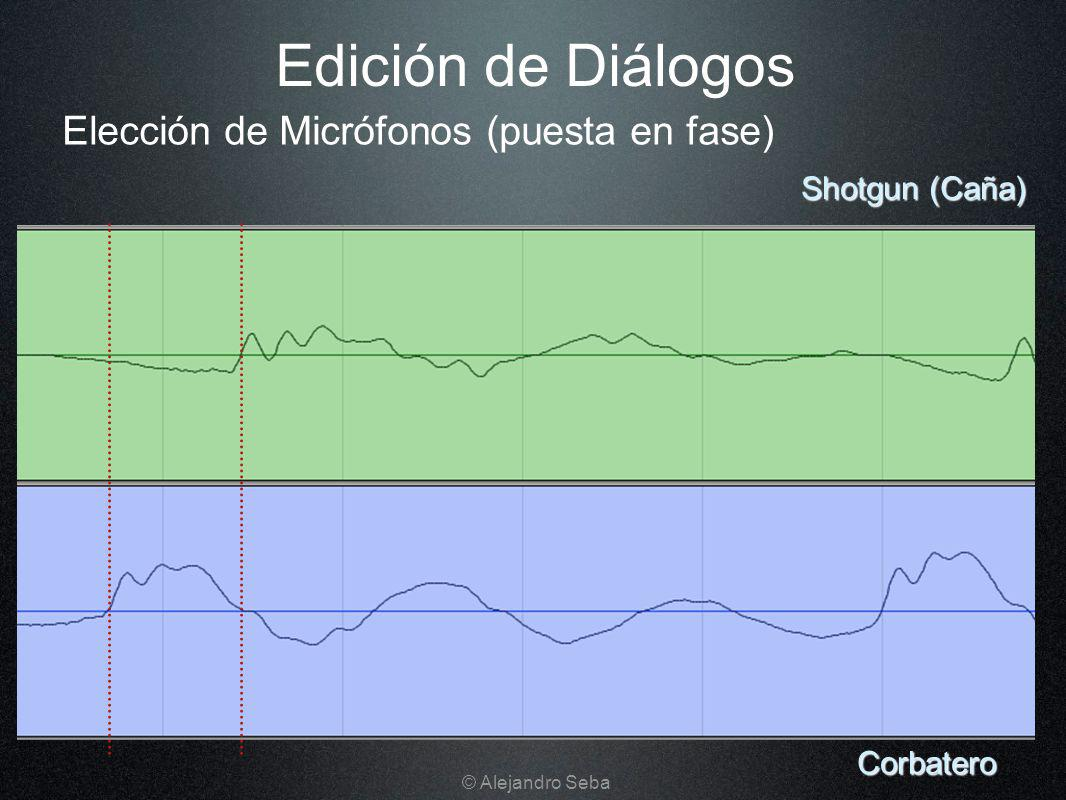 Edición de Diálogos Elección de Micrófonos (puesta en fase)