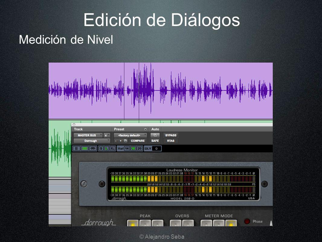 Edición de Diálogos Medición de Nivel © Alejandro Seba