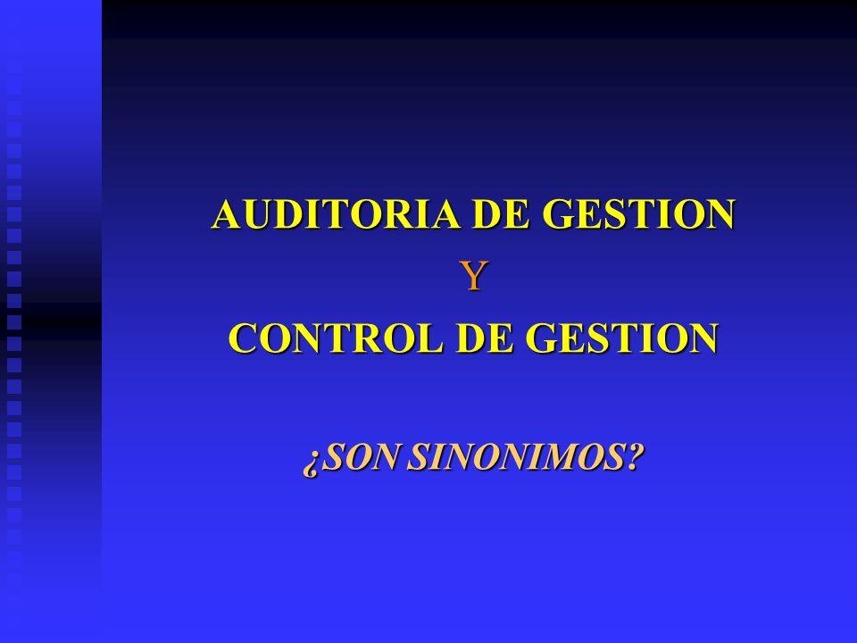 AUDITORIA DE GESTION CONTROL DE GESTION
