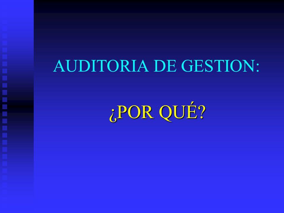 AUDITORIA DE GESTION: ¿POR QUÉ