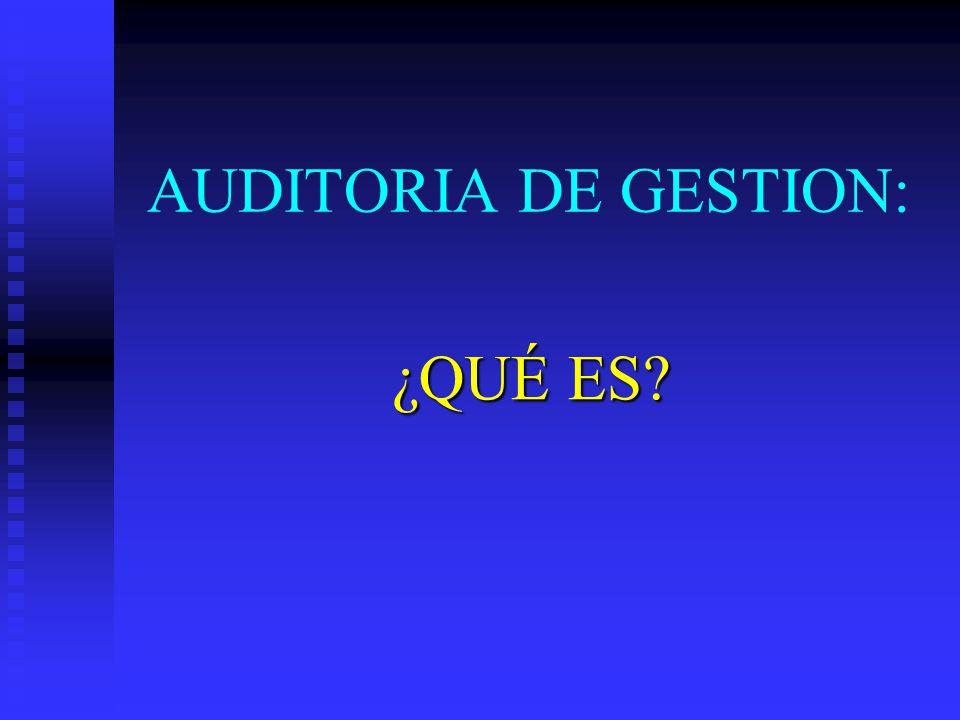 AUDITORIA DE GESTION: ¿QUÉ ES