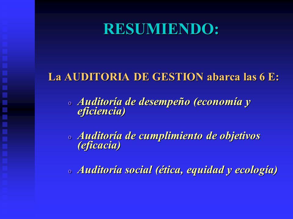 La AUDITORIA DE GESTION abarca las 6 E: