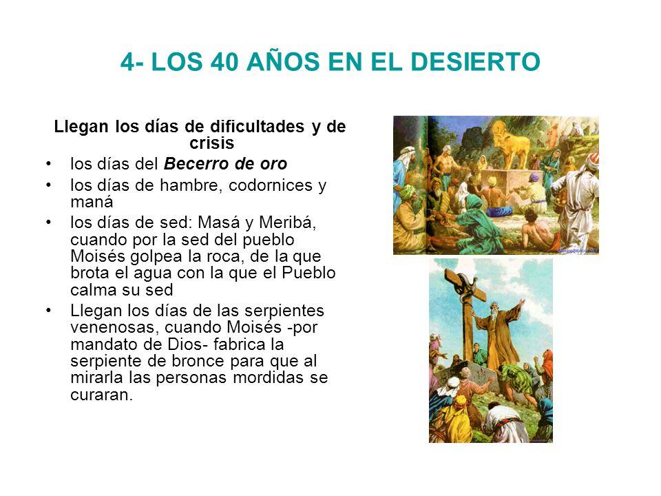 4- LOS 40 AÑOS EN EL DESIERTO