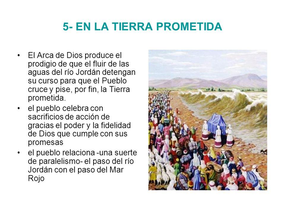 5- EN LA TIERRA PROMETIDA