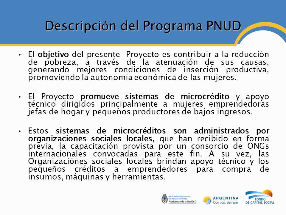 Descripción del Programa PNUD