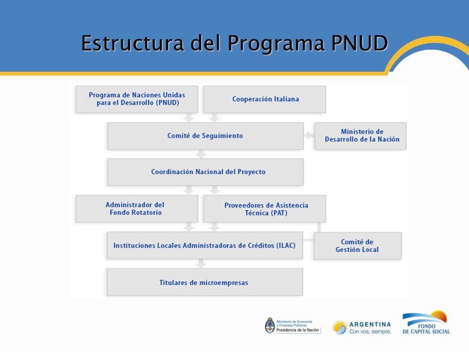 Estructura del Programa PNUD