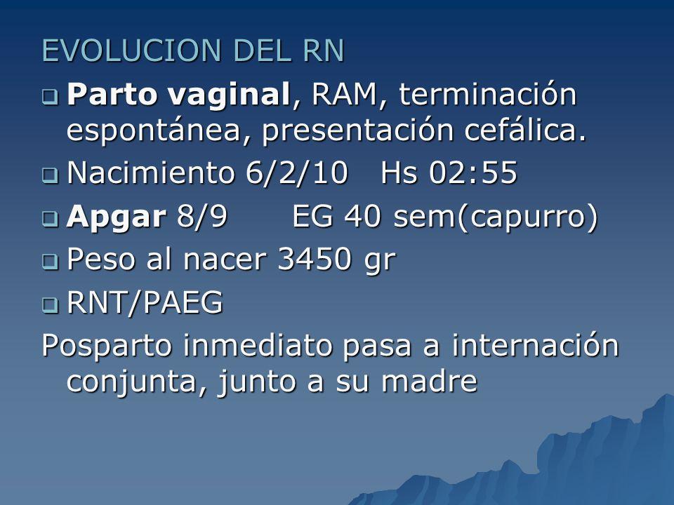 EVOLUCION DEL RN Parto vaginal, RAM, terminación espontánea, presentación cefálica. Nacimiento 6/2/10 Hs 02:55.
