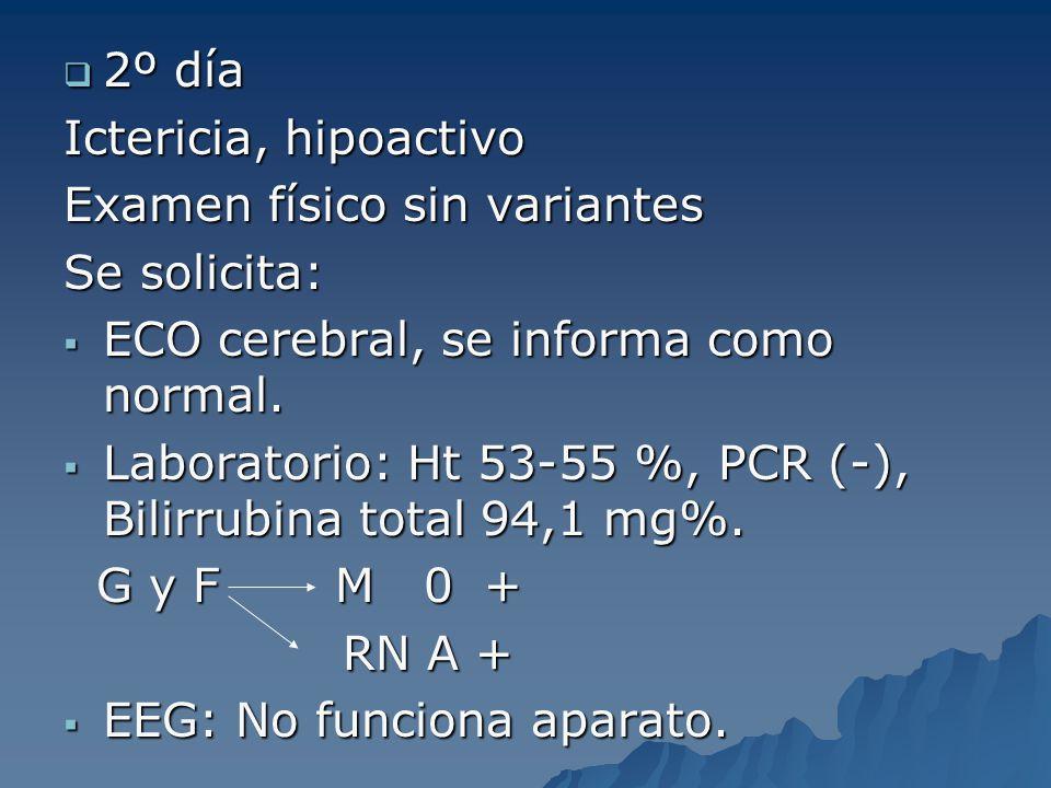 2º día Ictericia, hipoactivo. Examen físico sin variantes. Se solicita: ECO cerebral, se informa como normal.
