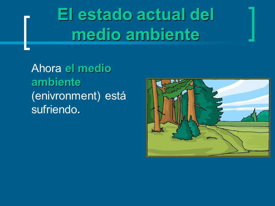El estado actual del medio ambiente