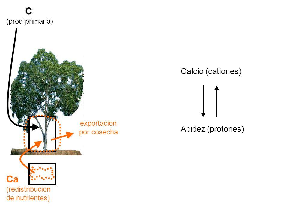 C Ca Calcio (cationes) Acidez (protones) (prod primaria) exportacion