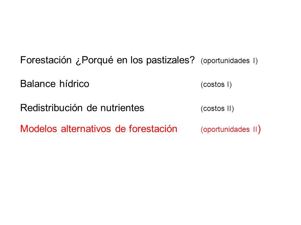 Forestación ¿Porqué en los pastizales (oportunidades I)