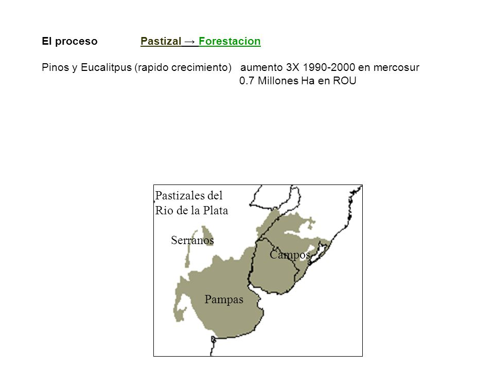 Pastizales del Rio de la Plata Serranos Campos Pampas